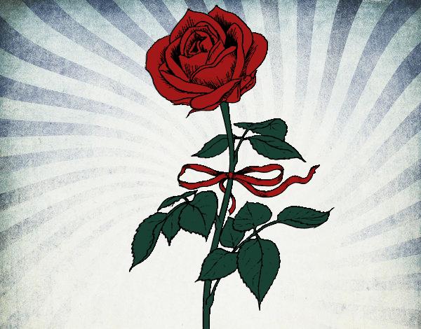 Coloriage Une rose colorié par atchicanon