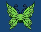 Papillon Emo