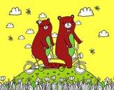 Amour des ours