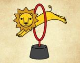 Saut du lion