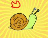 Coloriage L'escargot colorié par raphael