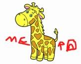 Coloriage Une girafe colorié par raphael
