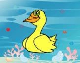 Coloriage Un canard colorié par Petit