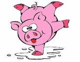 Cochon qui joue