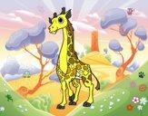 Girafe féminin