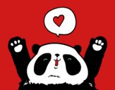 Panda amoreux